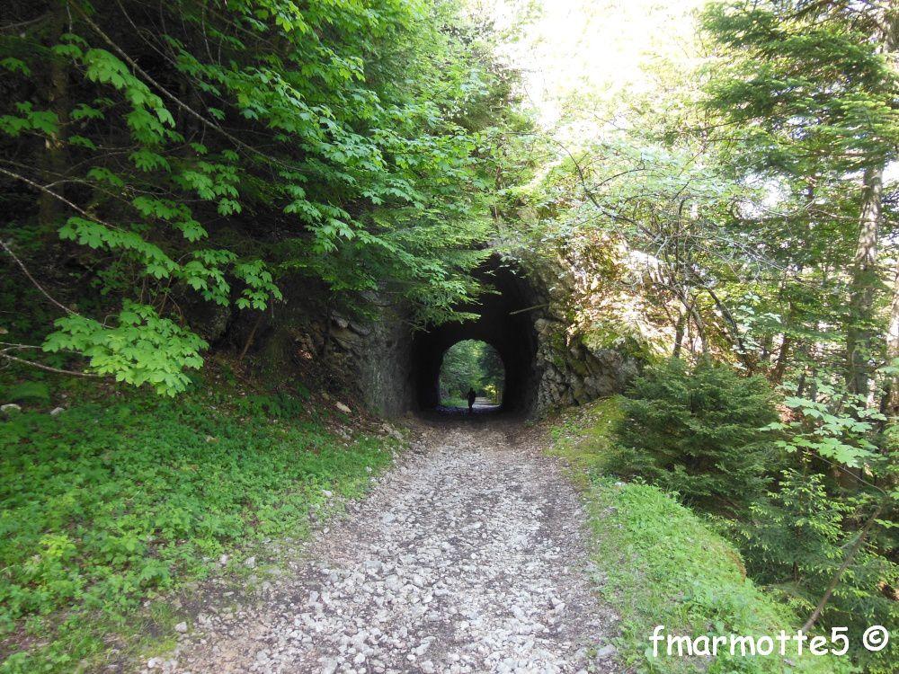 La montée au Revard par le Sentier de la Crémaillère. Dernière photo le passage en falaise par la descente du Golet de la Pierre.