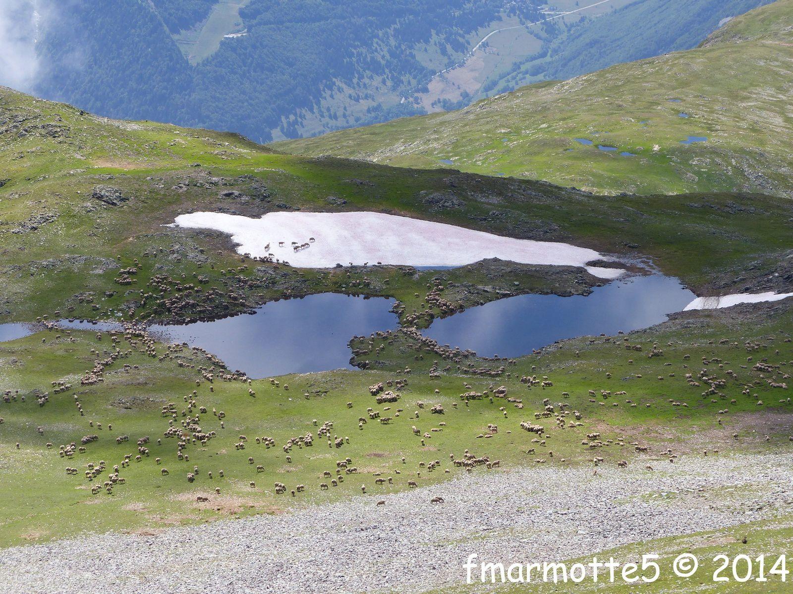 Le Grand Galbert 2561 m. Sommet et retour par la toundra. Partie II.