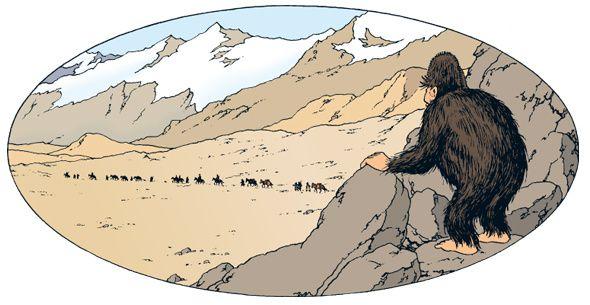 """Image : dans l'album """"Tintin au Tibet"""", la rencontre avec le Yéti..."""