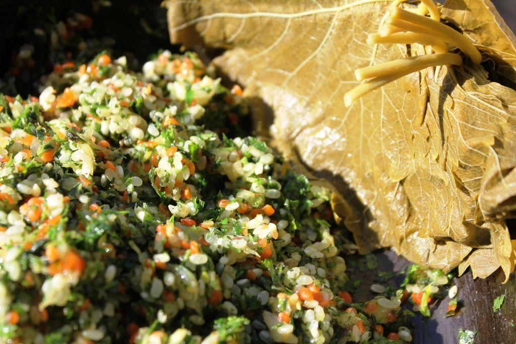 Dolmas de lentilles rouges - feuilles de vigne aux lentilles