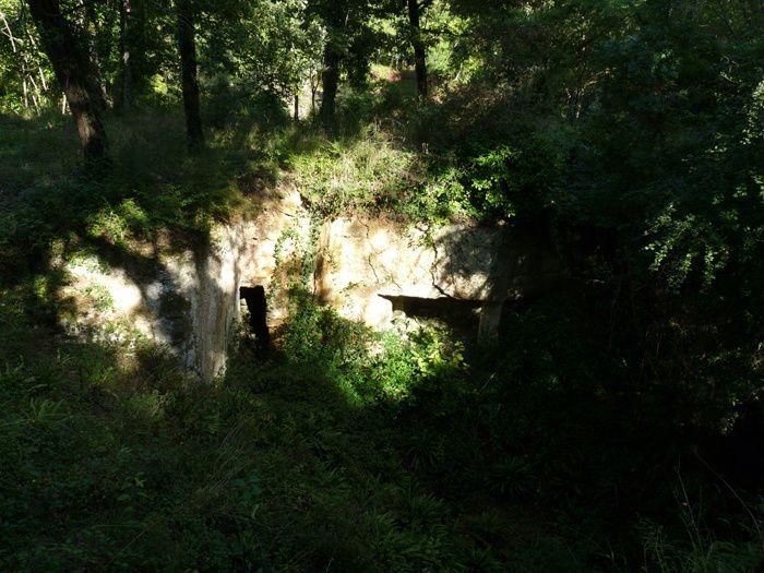 La pierre de Crazannes, un calcaire turonien charentais