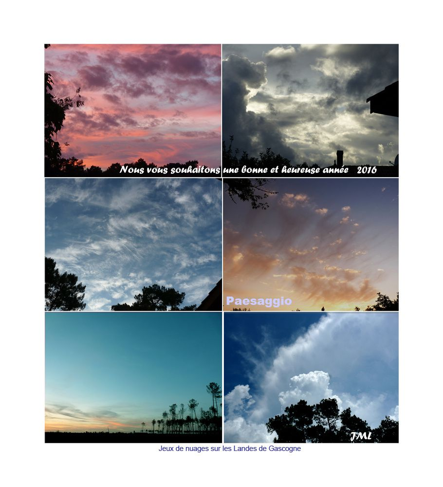 Jeux de nuages sur les Landes de Gascogne