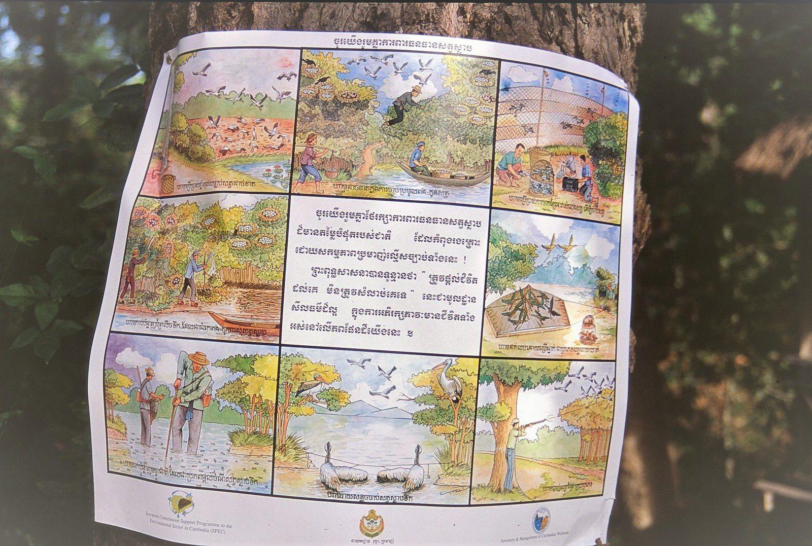 Cambodge : au secours de l'avifaune... et des agriculteurs