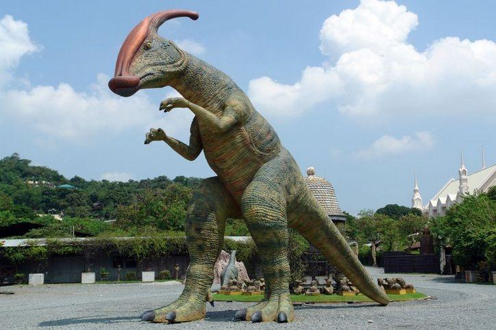Parasoraulophus de 10.69 mètres de hauteur .