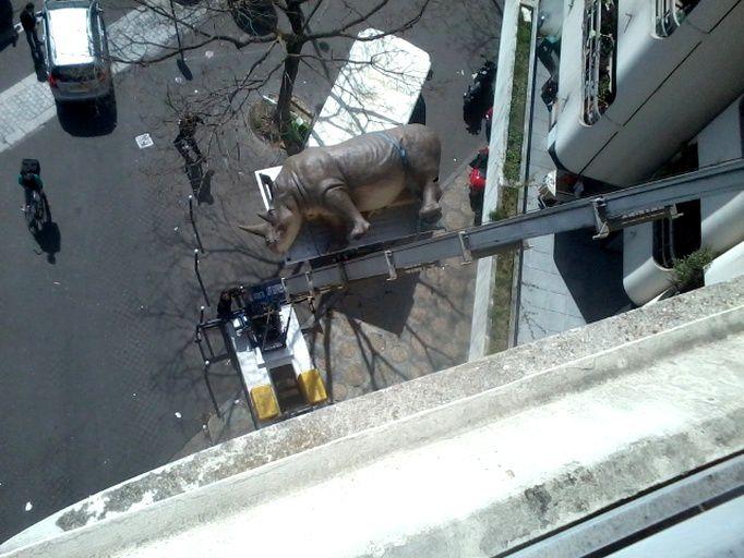 Un rhinocéros grandeur nature sur les toits de Paris ???