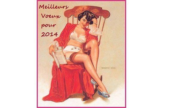 Meilleurs Vœux pour 2014 aux lectrices et aux lecteurs