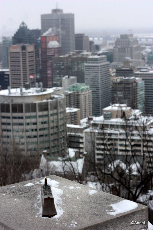 Le Mont-Royal en hiver