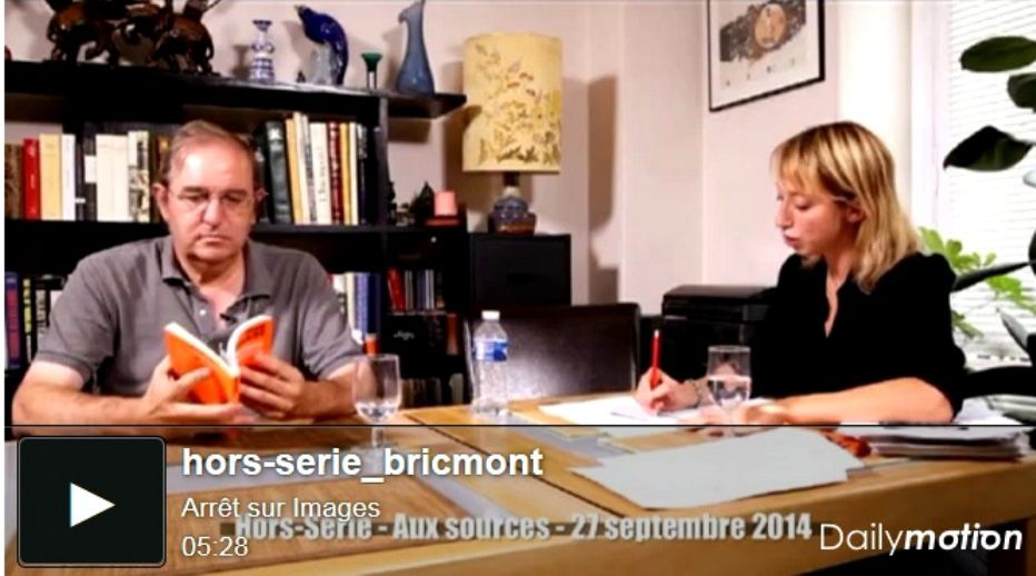 Bricmont, Loi Gayssot, antisémitisme et arrêt sur images