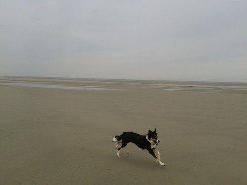 La mer trop loin, Ina avait la plage à elle toute seule