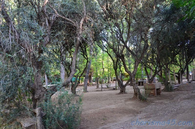 Bodega Bousquet (Argentine en camping-car)