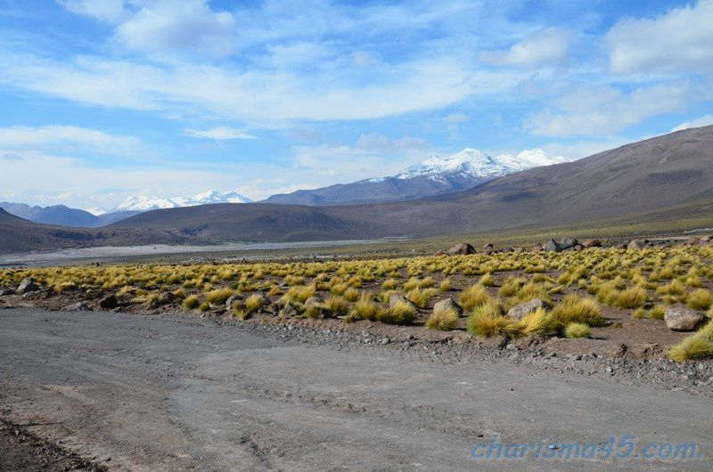 El Tatio ( Chili en camping-car)