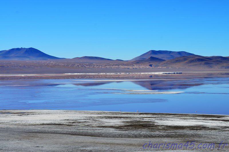 Parc Eduardo Avaroa, Laguna Colorada (Bolivie en camping-car)