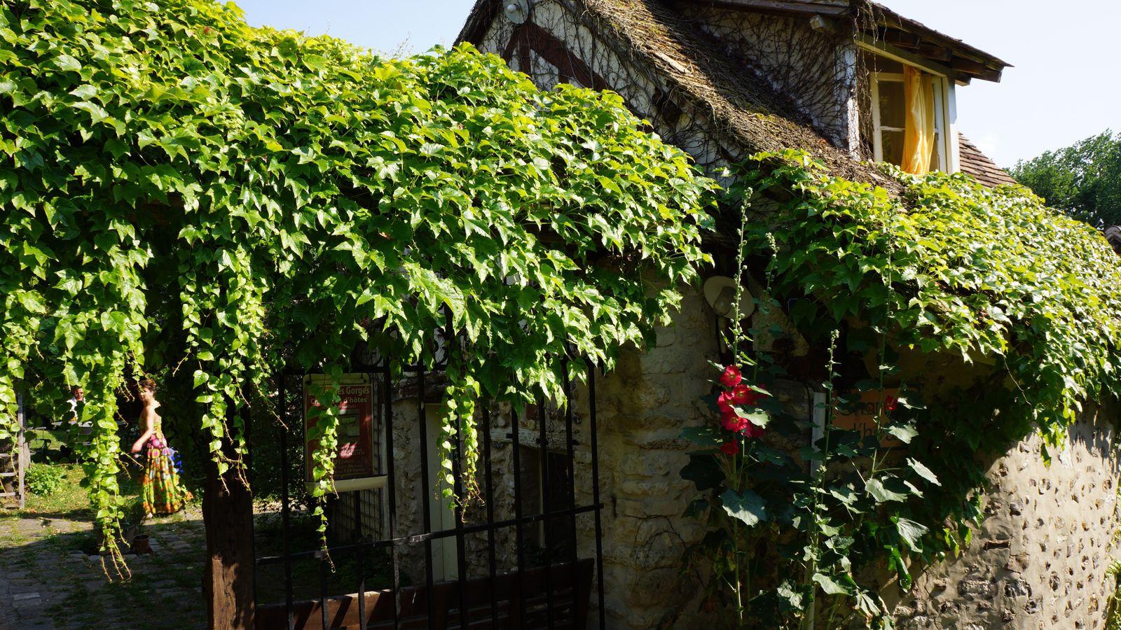 Maisons du village, avec le fameux Hôtel Baudy. Il n'y a que deux rues dans le village !