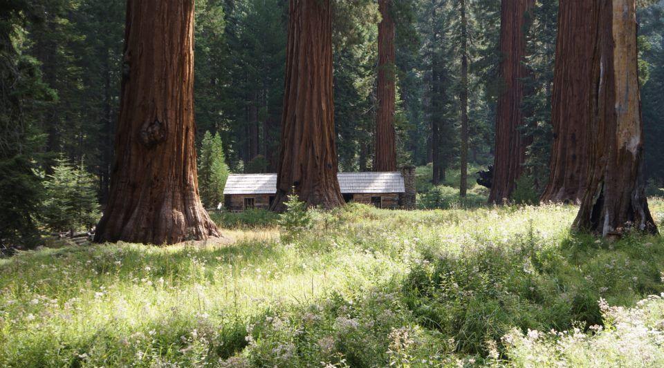 Yosemite et les vignes de Soloma