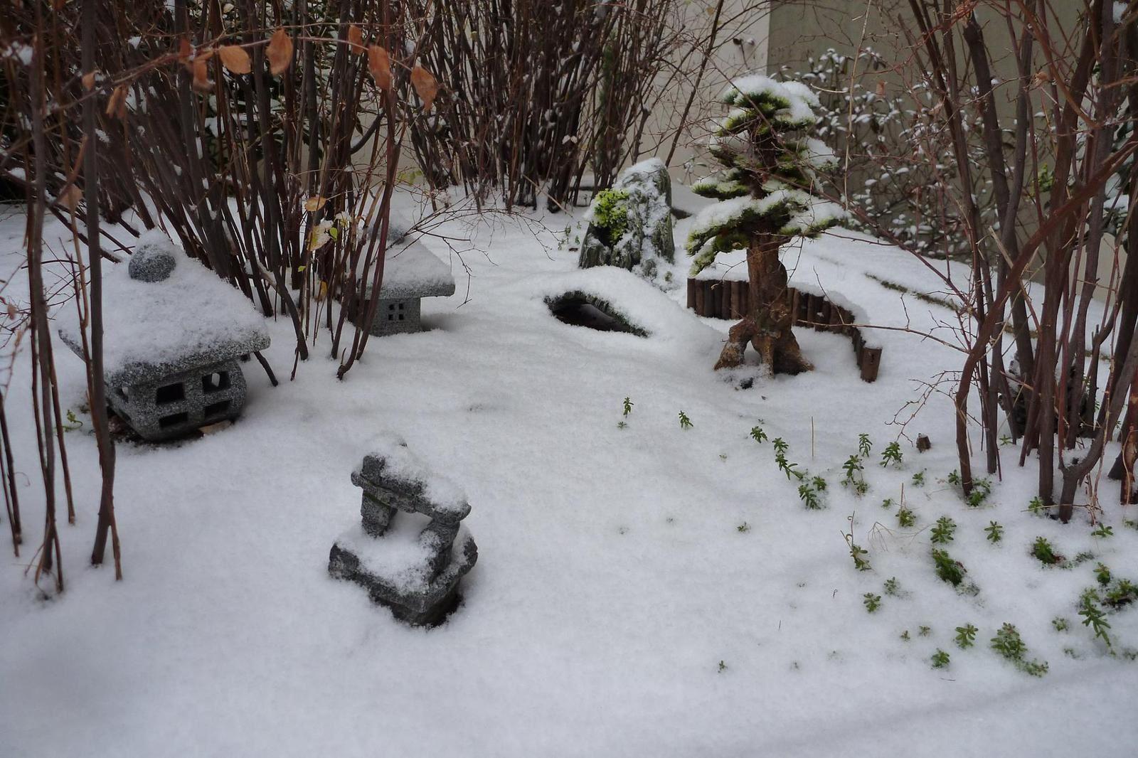 Mini Jardin Zen Japonais