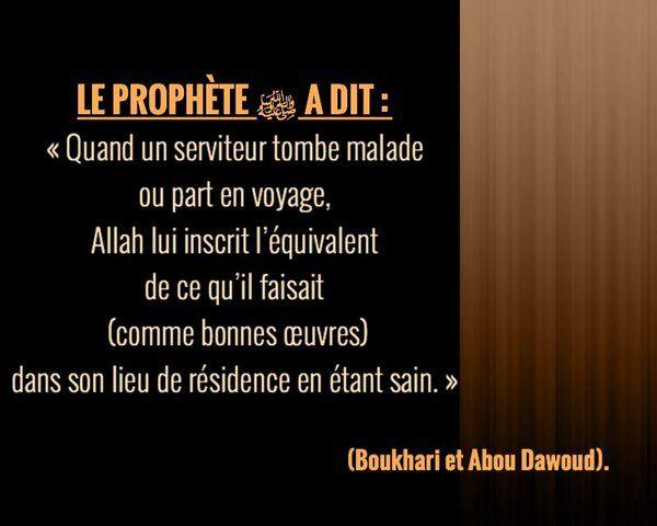 Faites preuve de persévérance dans l'obéissance à Allah