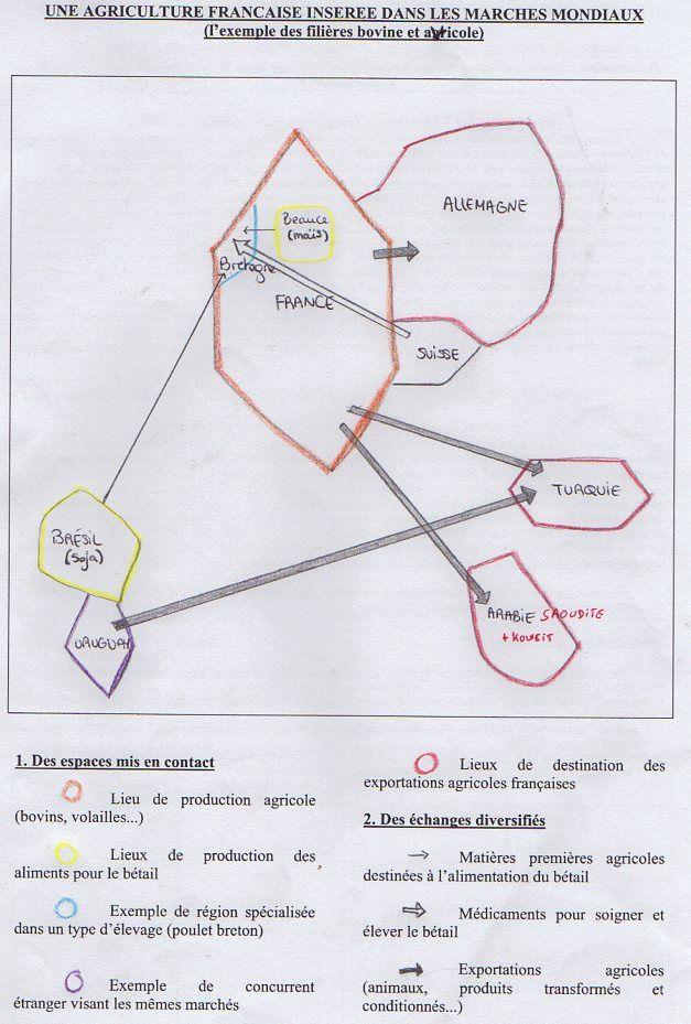 Le travail de Lucas, Lyse, Laurène et Laureline de Première S3