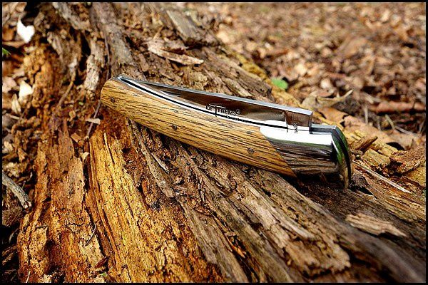 Chambriard : le compagnon en chêne