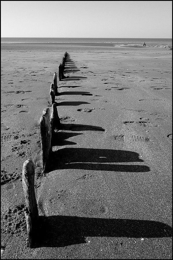 Normandie : Villers sur Mer et ses fossiles