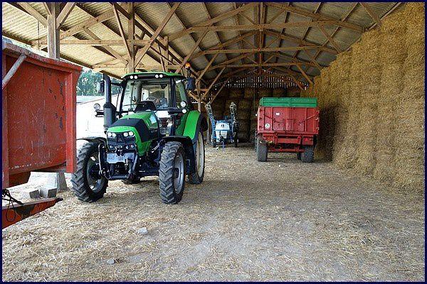 Normandie, Pays de Caux : élevage de chèvres et fromage