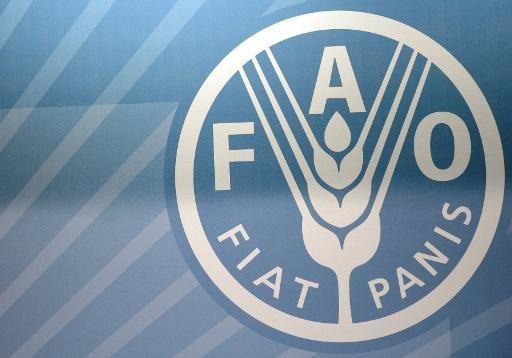 La FAO alerte sur la &quot&#x3B;grave insécurité alimentaire&quot&#x3B; au Sahel