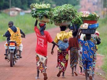 Centrafrique : situation toujours tendue à Bossangoa (RFI)