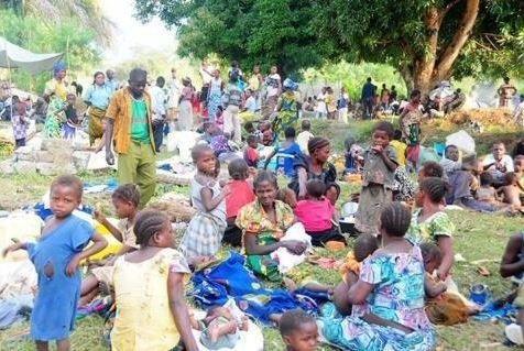 Equateur : 53 600 réfugiés centrafricains enregistrés depuis 2013, selon le HCR