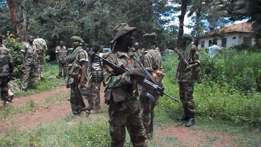 Des exactions de l'ex-Seleka font 34 morts dans la localité des Mbrés