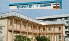 Renforcement de capacités pour 50 enseignants chercheurs centrafricains