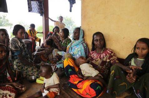 Lu pour vous : En Centrafrique, l'exode interdit des Peuls