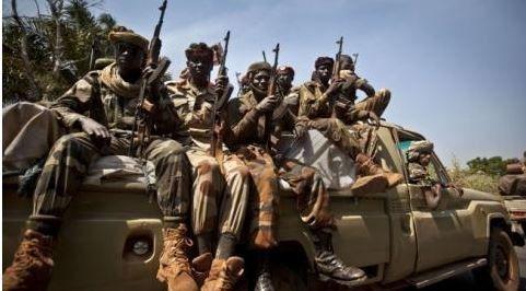 Lutte contre Boko Haram : Ndjamena va envoyer des soldats au nord du Cameroun