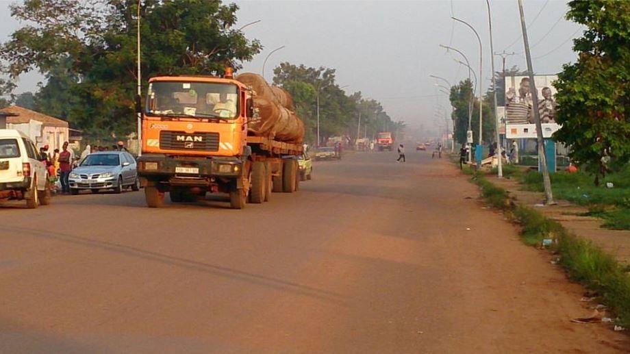Centrafrique: des entreprises forestières ont financé des groupes rebelles (ONG)