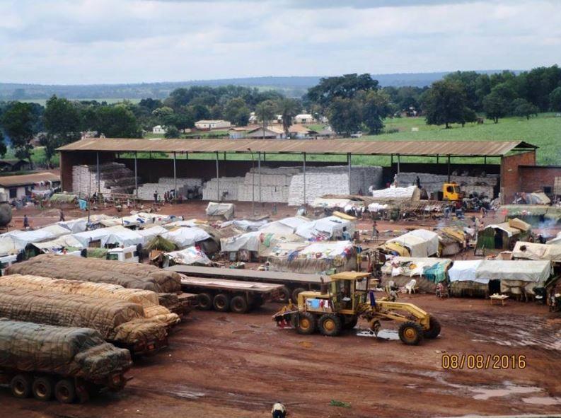 Lu pour vous : Centrafrique : pénurie de sucre à cause de la guerre civile