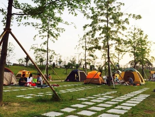 Le terrain de camping de Dori et les éclairages d'Ara-batgil.