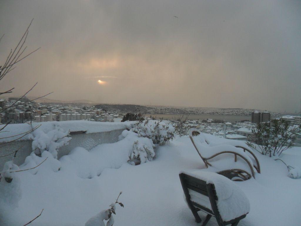 Ma terrasse, ce matin...