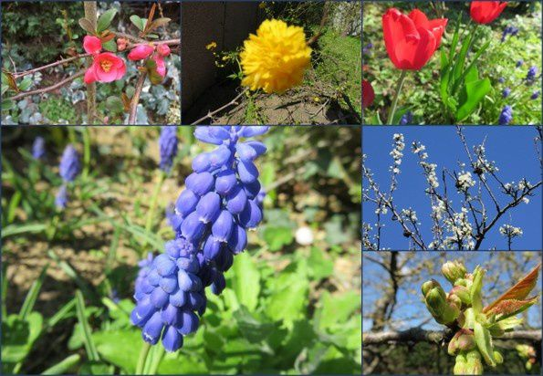 Un weekend de printemps (2015-2)