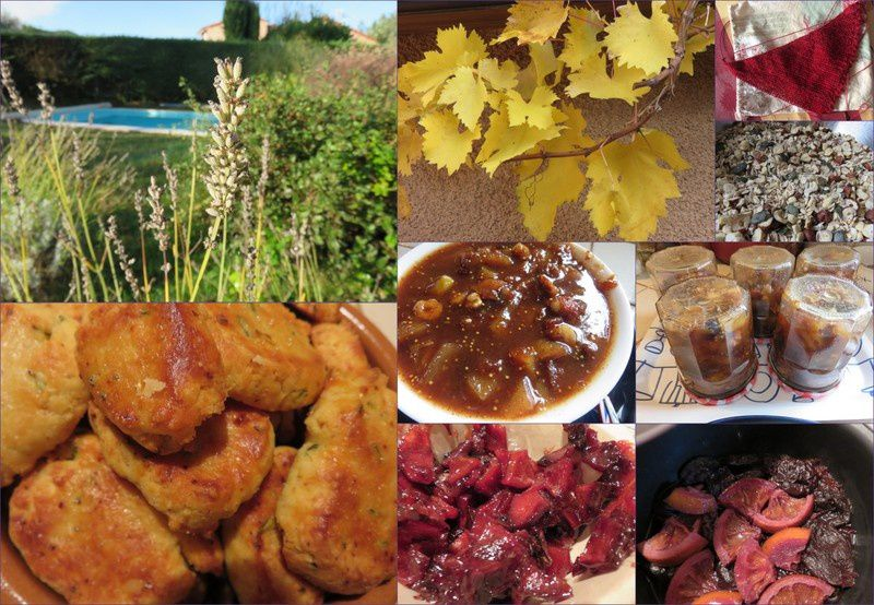 Un week-end d'automne (2016-8)