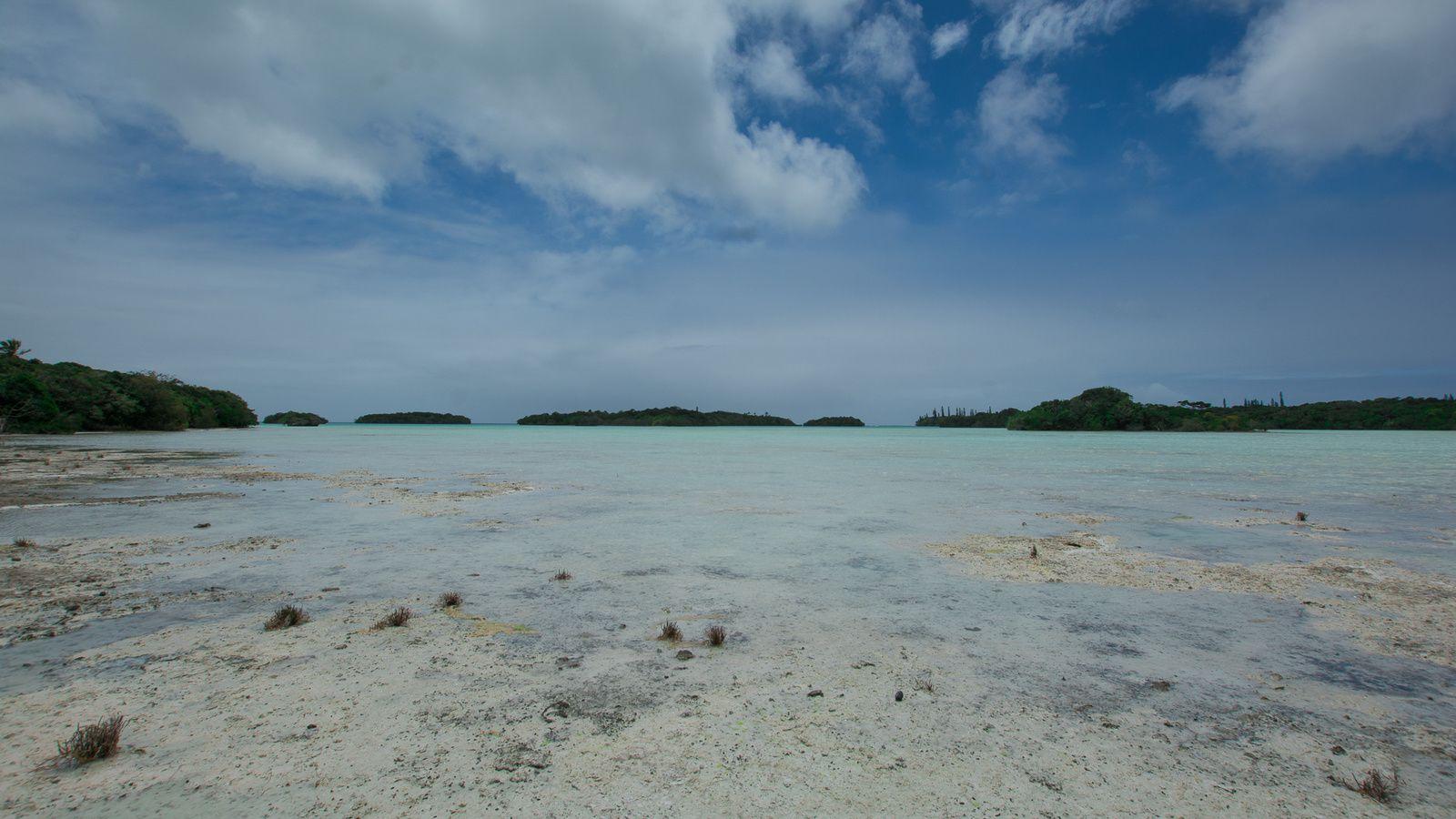 La baie des crabes