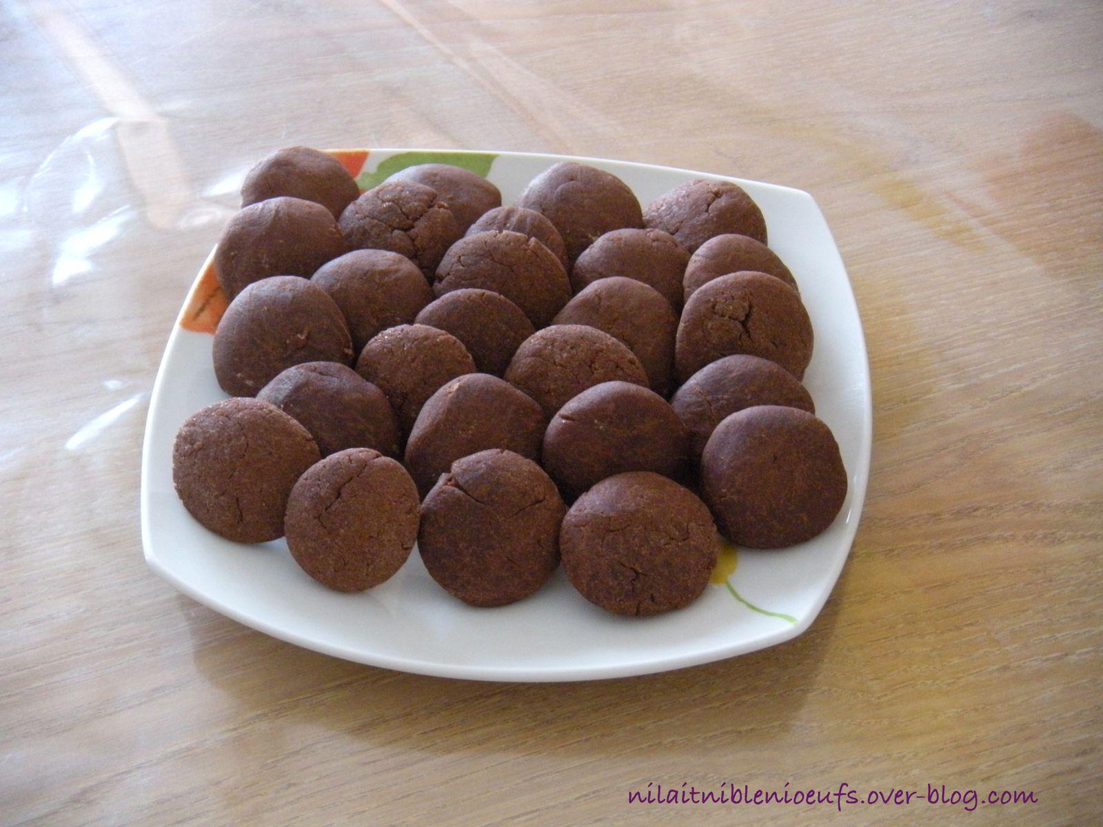 Petits biscuits au chocolat