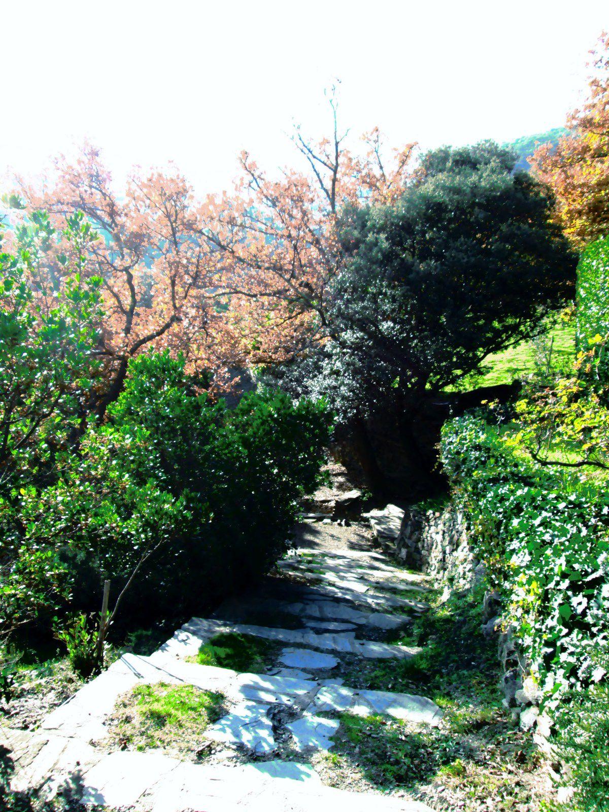 Le prieuré de Serrabone et son jardin