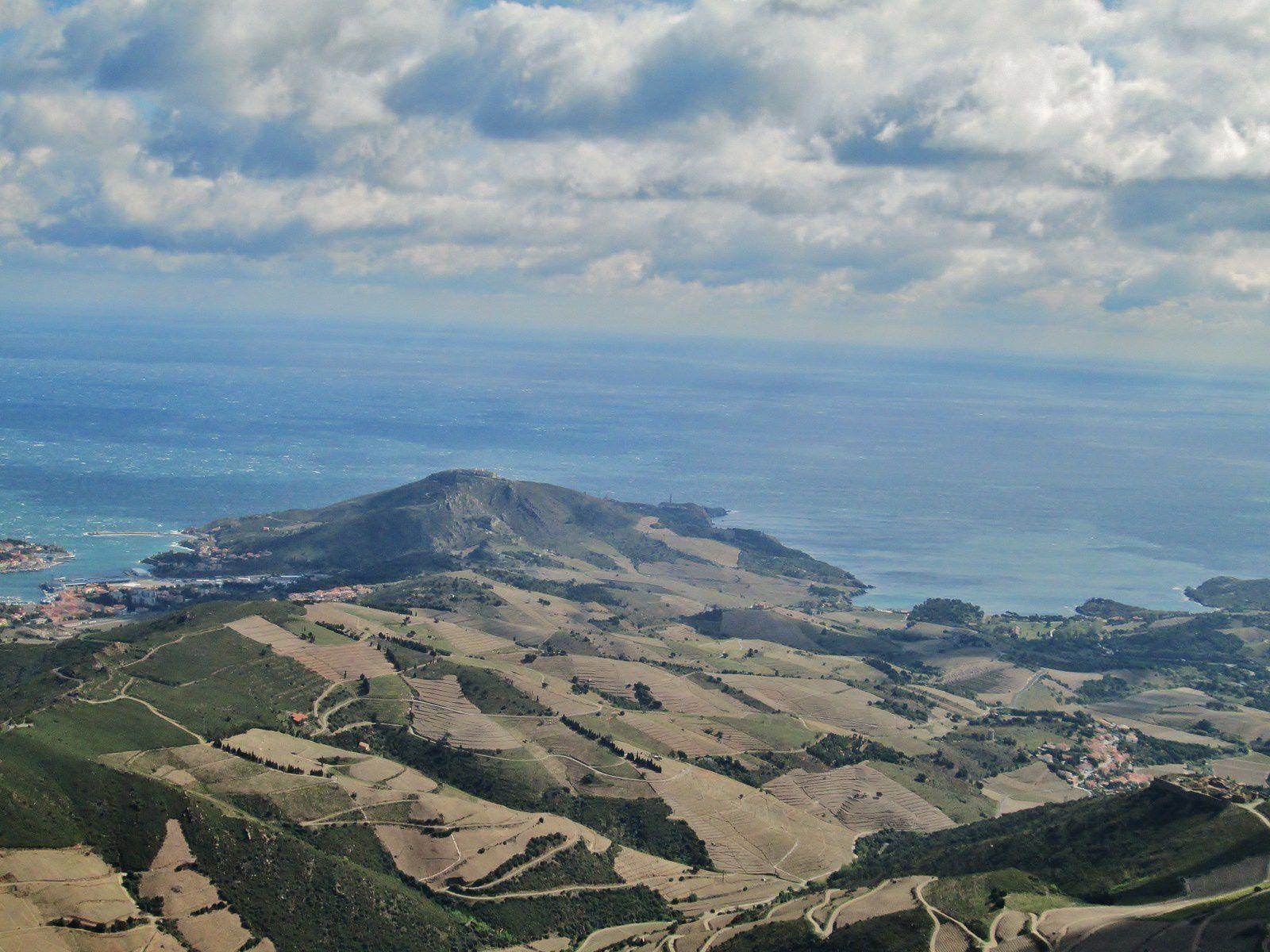 paysages des vignes de Collioure Banyuls