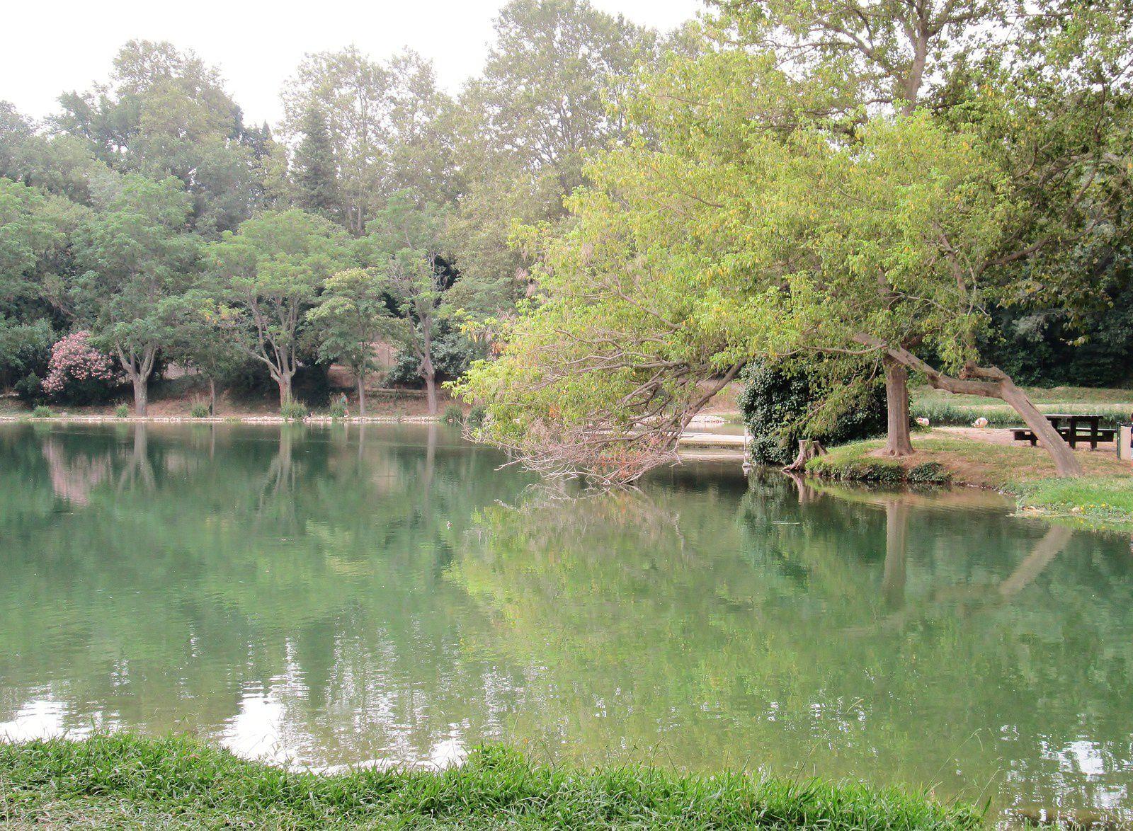 lac du Soler 66
