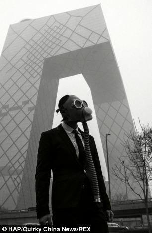 LA VIE RENAÎT ET CONTINUE MALGRÉ LA GUERRE OU LA POLLUTION
