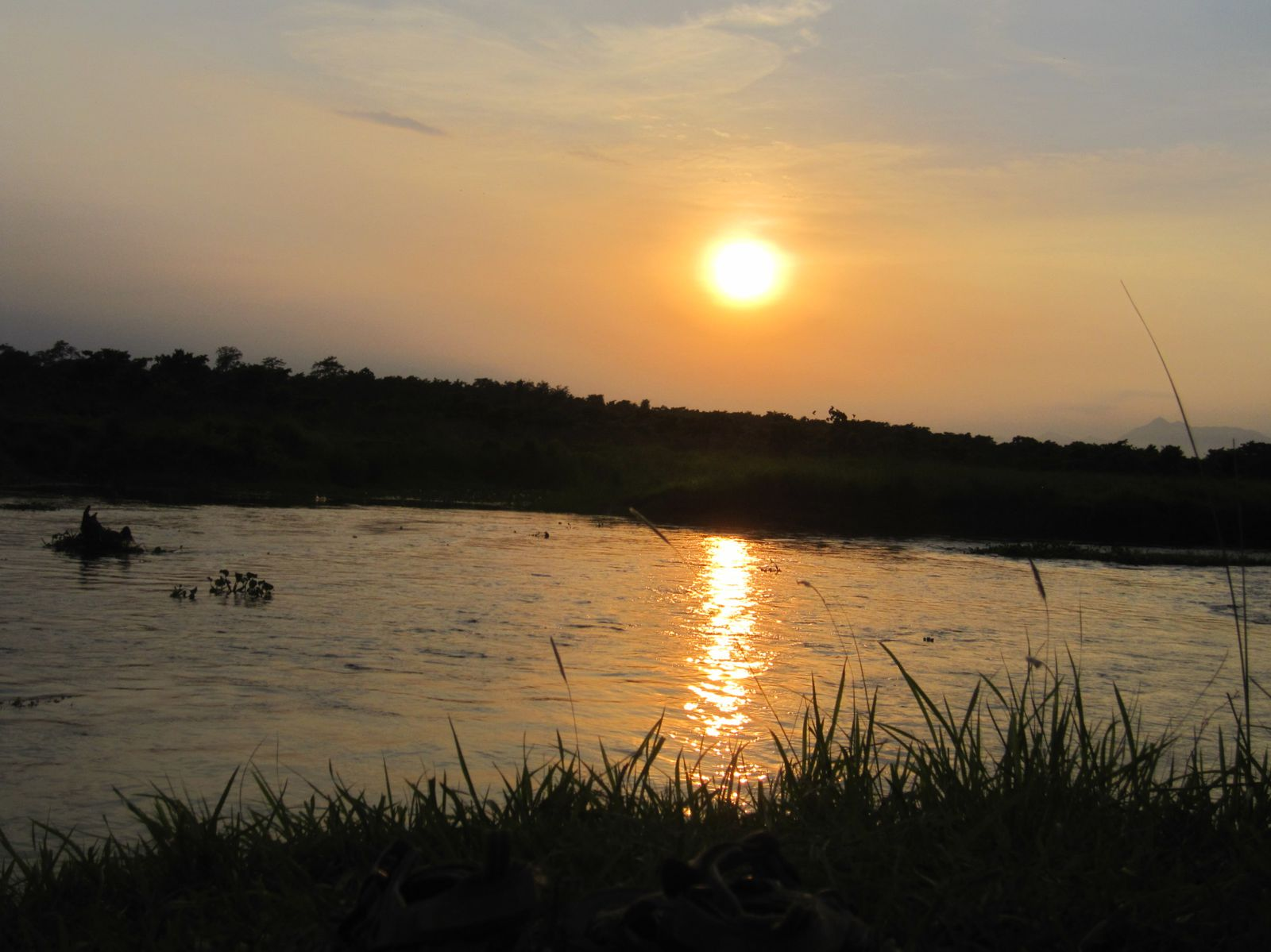 Sauraha: Jungle sunset