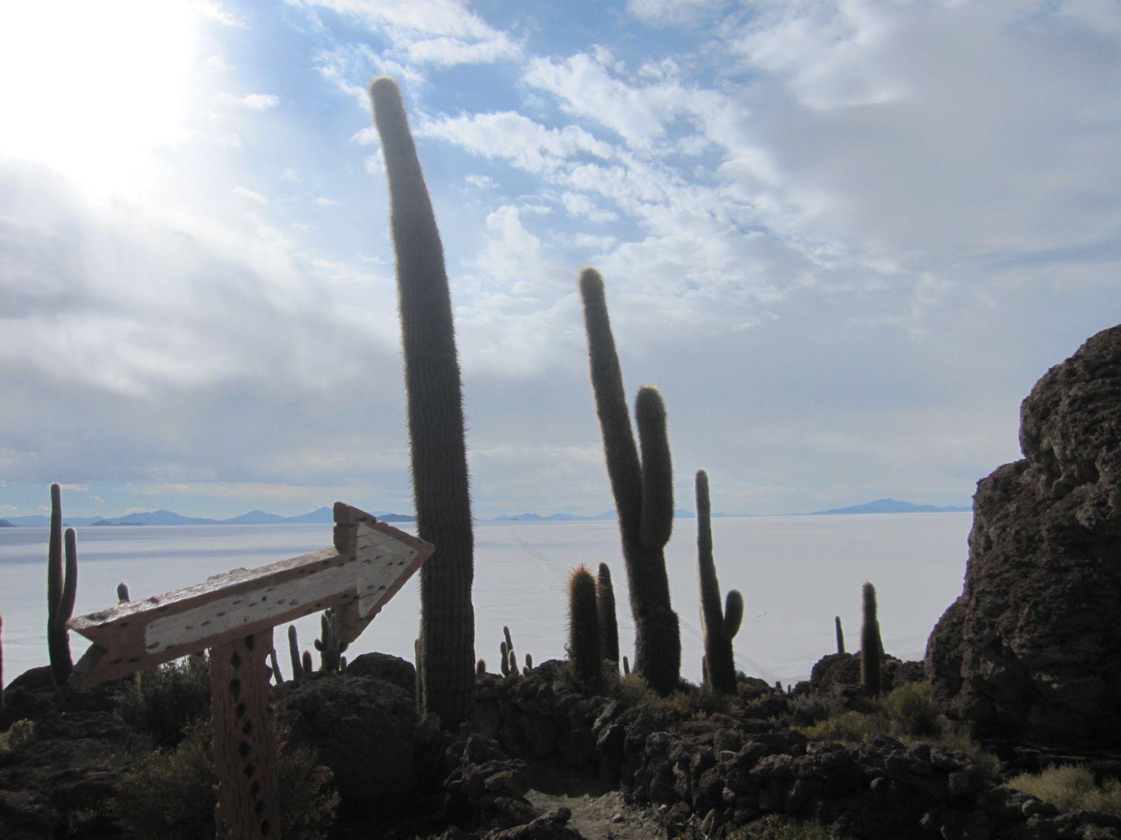 940km entre Uyuni y la frontera del Chili