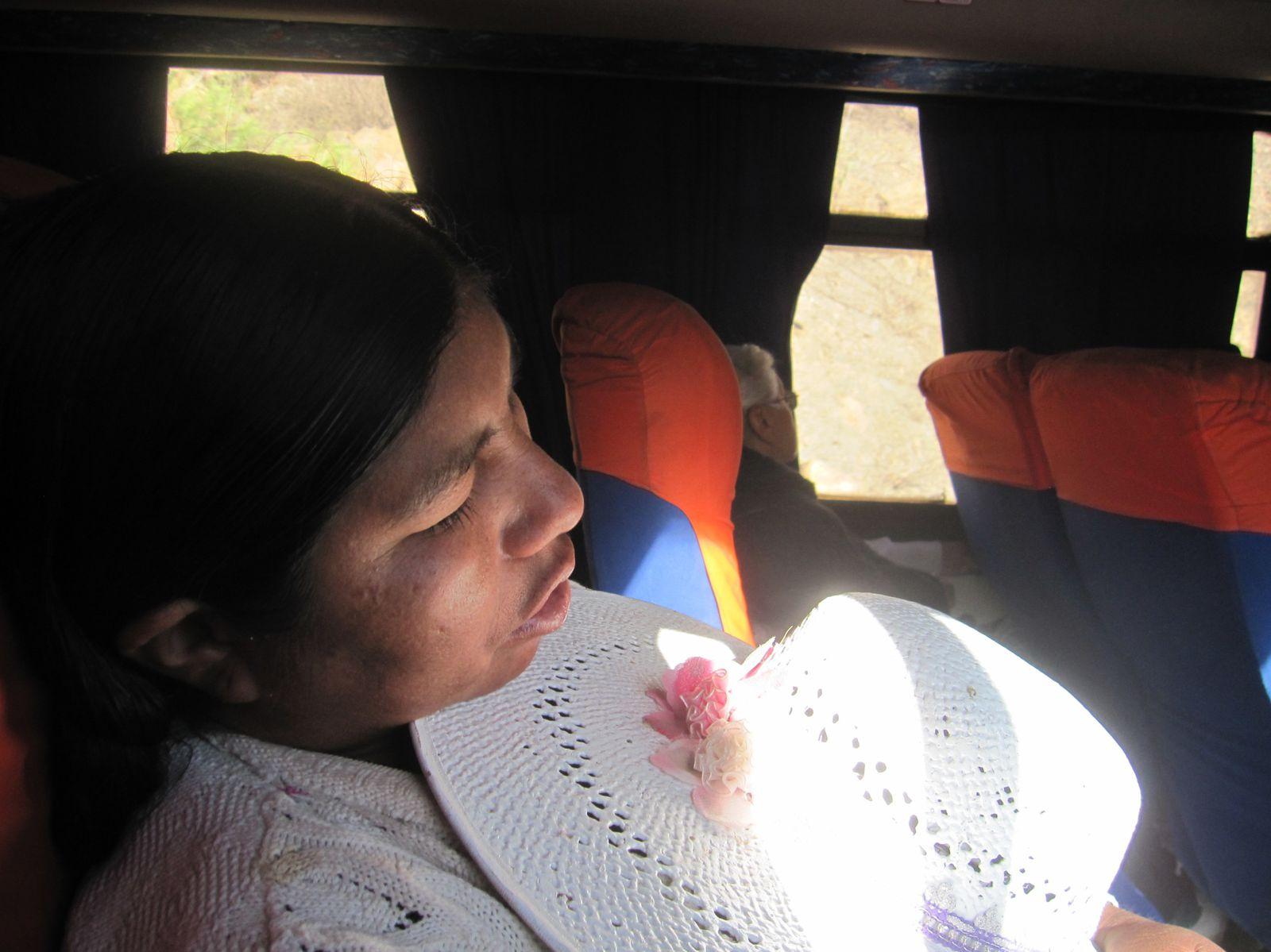 On the road: Compañera de viaje