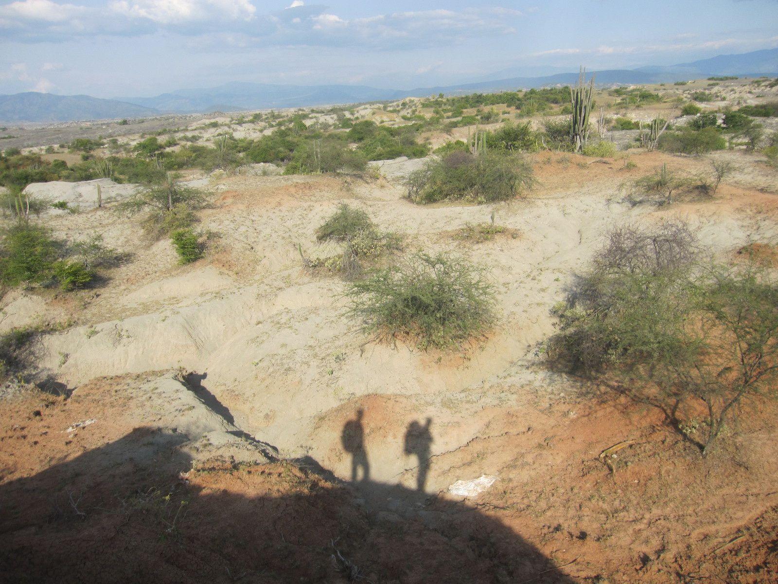 Desierto de Tatacoa: Dans la vie, il y a des cactus...