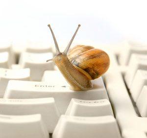 Le Slow Blogging....