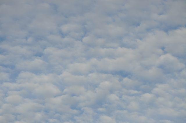 Lyon, la CAPI des moutons dans le ciel !