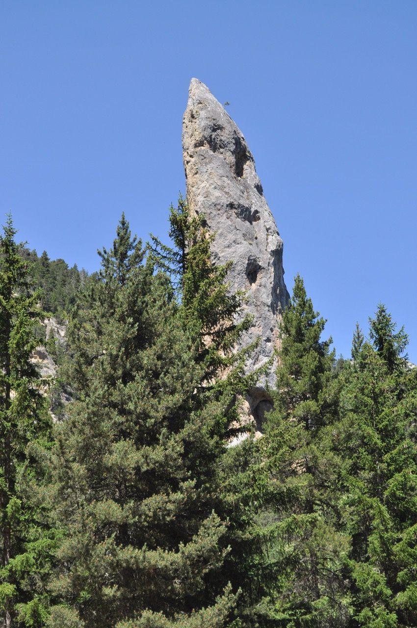 Le monolithe domine la foret